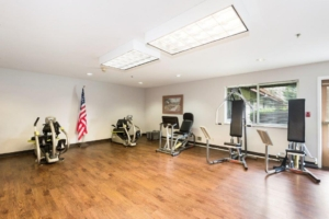 Alpine Way | EverFit fitness room